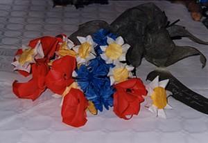 fiori di campo2